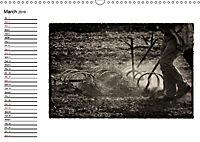 Harvest, pictures from yesteryear (Wall Calendar 2019 DIN A3 Landscape) - Produktdetailbild 3
