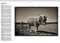 Harvest, pictures from yesteryear (Wall Calendar 2019 DIN A3 Landscape) - Produktdetailbild 4