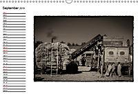 Harvest, pictures from yesteryear (Wall Calendar 2019 DIN A3 Landscape) - Produktdetailbild 9