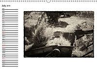 Harvest, pictures from yesteryear (Wall Calendar 2019 DIN A3 Landscape) - Produktdetailbild 7