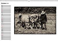 Harvest, pictures from yesteryear (Wall Calendar 2019 DIN A3 Landscape) - Produktdetailbild 10