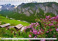 Hautes Alpes de Provence (Wandkalender 2019 DIN A4 quer) - Produktdetailbild 3