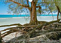 Hawaii ... das ist nicht nur Waikiki (Wandkalender 2019 DIN A4 quer) - Produktdetailbild 5
