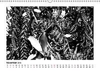 Hawaii - Pazifische Kontraste (Wandkalender 2019 DIN A3 quer) - Produktdetailbild 11