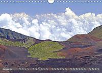 Hawaii's diversity (Wall Calendar 2019 DIN A4 Landscape) - Produktdetailbild 1