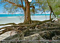 Hawaii's diversity (Wall Calendar 2019 DIN A4 Landscape) - Produktdetailbild 5