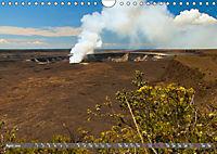 Hawaii's diversity (Wall Calendar 2019 DIN A4 Landscape) - Produktdetailbild 4