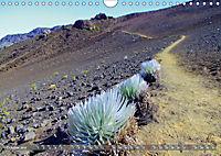 Hawaii's diversity (Wall Calendar 2019 DIN A4 Landscape) - Produktdetailbild 10
