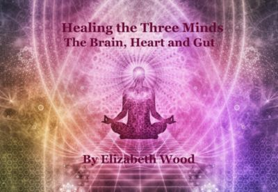 Healing the Three Minds - The Brain, Heart and Gut, Elizabeth Wood