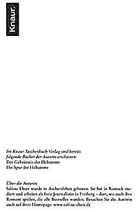 Hebammen-Romane Band 3: Die Entscheidung der Hebamme - Produktdetailbild 2