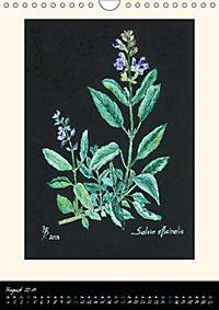 Heilkräuter in Pastell (Wandkalender 2019 DIN A4 hoch) - Produktdetailbild 8