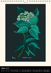 Heilkräuter in Pastell (Wandkalender 2019 DIN A4 hoch) - Produktdetailbild 10