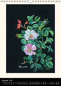Heilkräuter in Pastell (Wandkalender 2019 DIN A4 hoch) - Produktdetailbild 12