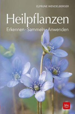 Heilpflanzen - Elfrune Wendelberger |