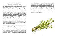 Heilsalben aus Wald und Wiese - Produktdetailbild 5