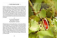 Heilsalben aus Wald und Wiese - Produktdetailbild 4