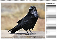 Heimische Gartenvögel Gefiederte Freunde (Wandkalender 2019 DIN A2 quer) - Produktdetailbild 3