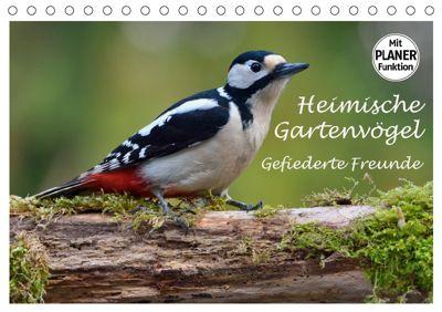 Heimische Gartenvögel Gefiederte Freunde (Tischkalender 2019 DIN A5 quer), Dieter-M. Wilczek