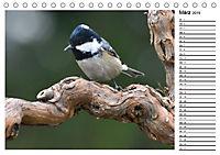 Heimische Gartenvögel Gefiederte Freunde (Tischkalender 2019 DIN A5 quer) - Produktdetailbild 3