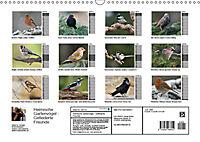 Heimische Gartenvögel Gefiederte Freunde (Wandkalender 2019 DIN A3 quer) - Produktdetailbild 13
