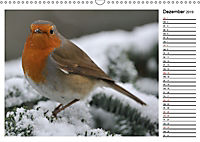 Heimische Gartenvögel Gefiederte Freunde (Wandkalender 2019 DIN A3 quer) - Produktdetailbild 12