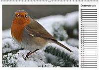 Heimische Gartenvögel Gefiederte Freunde (Wandkalender 2019 DIN A2 quer) - Produktdetailbild 12