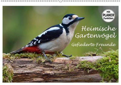 Heimische Gartenvögel Gefiederte Freunde (Wandkalender 2019 DIN A2 quer), Dieter-M. Wilczek