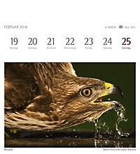 Heimische Vögel 2018 - Produktdetailbild 4