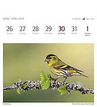 Heimische Vögel 2018 - Produktdetailbild 9