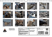 Helgoländer Kegelrobben (Wandkalender 2019 DIN A4 quer) - Produktdetailbild 13