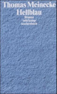 Hellblau, Thomas Meinecke