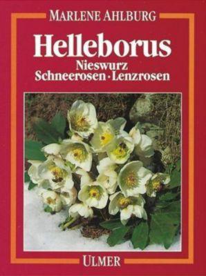 Helleborus, Marlene S. Ahlburg