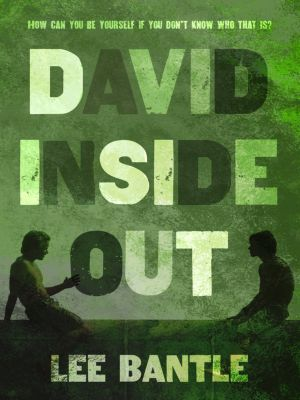 Henry Holt and Co. (BYR): David Inside Out, Lee Bantle