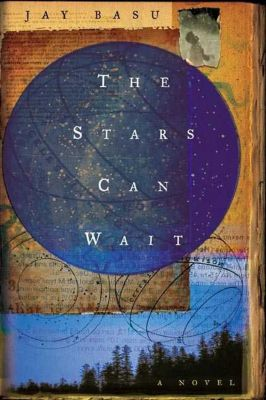 Henry Holt and Co.: The Stars Can Wait, Jay Basu