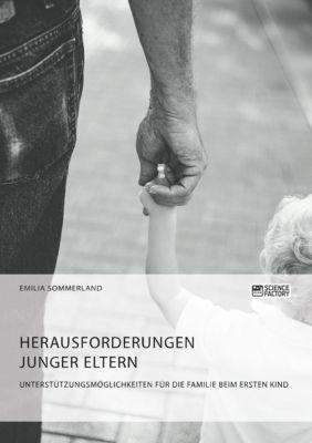 Herausforderungen junger Eltern. Unterstützungsmöglichkeiten für die Familie beim ersten Kind - Emilia Sommerland pdf epub