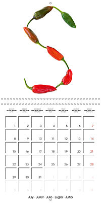 Herbs and Spices in the Kitchen (Wall Calendar 2019 300 × 300 mm Square) - Produktdetailbild 7
