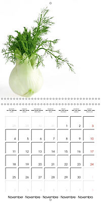 Herbs and Spices in the Kitchen (Wall Calendar 2019 300 × 300 mm Square) - Produktdetailbild 11