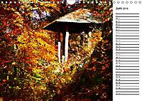 Herbstträume im Taunus (Wandkalender 2019 DIN A4 quer) - Produktdetailbild 6