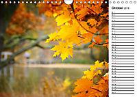 Herbstträume im Taunus (Wandkalender 2019 DIN A4 quer) - Produktdetailbild 10