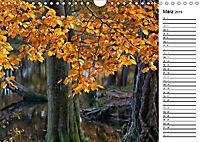 Herbstträume im Taunus (Wandkalender 2019 DIN A4 quer) - Produktdetailbild 3