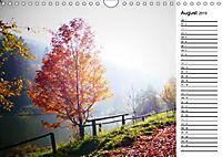 Herbstträume im Taunus (Wandkalender 2019 DIN A4 quer) - Produktdetailbild 8