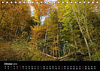 Herbstzauber in der Maisinger Schlucht (Tischkalender 2019 DIN A5 quer) - Produktdetailbild 10