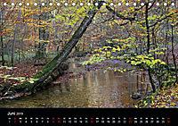 Herbstzauber in der Maisinger Schlucht (Tischkalender 2019 DIN A5 quer) - Produktdetailbild 6