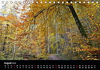 Herbstzauber in der Maisinger Schlucht (Tischkalender 2019 DIN A5 quer) - Produktdetailbild 8