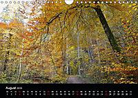 Herbstzauber in der Maisinger Schlucht (Wandkalender 2019 DIN A4 quer) - Produktdetailbild 8