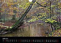 Herbstzauber in der Maisinger Schlucht (Wandkalender 2019 DIN A4 quer) - Produktdetailbild 6