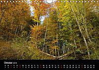 Herbstzauber in der Maisinger Schlucht (Wandkalender 2019 DIN A4 quer) - Produktdetailbild 10