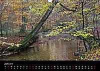 Herbstzauber in der Maisinger Schlucht (Wandkalender 2019 DIN A3 quer) - Produktdetailbild 6