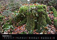 Herbstzauber in der Maisinger Schlucht (Wandkalender 2019 DIN A3 quer) - Produktdetailbild 9