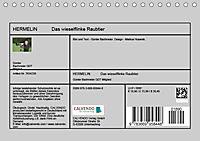 Hermelin - das wieselflinke Raubtier (Tischkalender 2019 DIN A5 quer) - Produktdetailbild 13